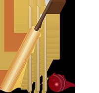 cricket-icon-2