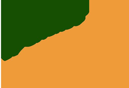 gs-cricket-logo